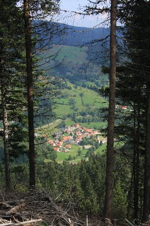 Haus Erika: Wieden from the hills above
