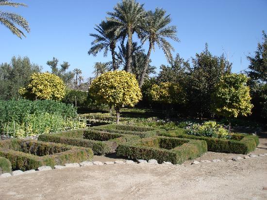 Ksar Char-Bagh: Gardens