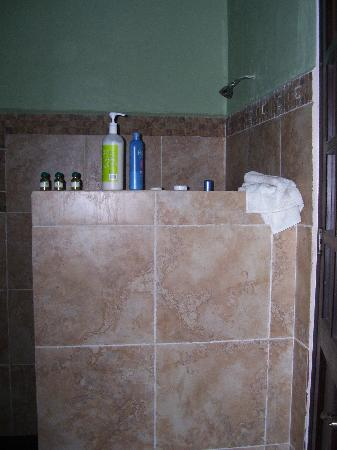 Casa Santiago: awesome shower for tall folks