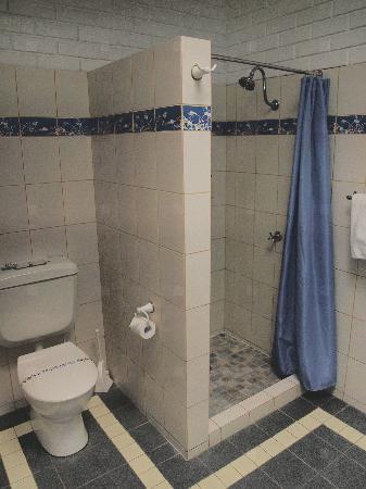Comfort Inn The International: Shower/Toilet area