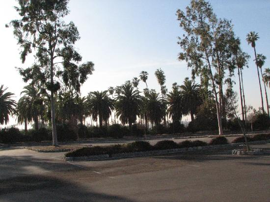 Riverside, Kaliforniya: California Citrus Park empty parking lot