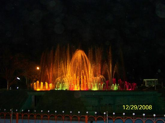 Tungabhadra Gardens and Dam: Musical Fountain