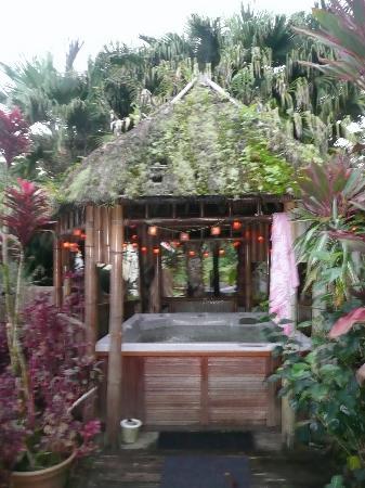 Coconut Cottage Bed & Breakfast: Hottub in the backgarden