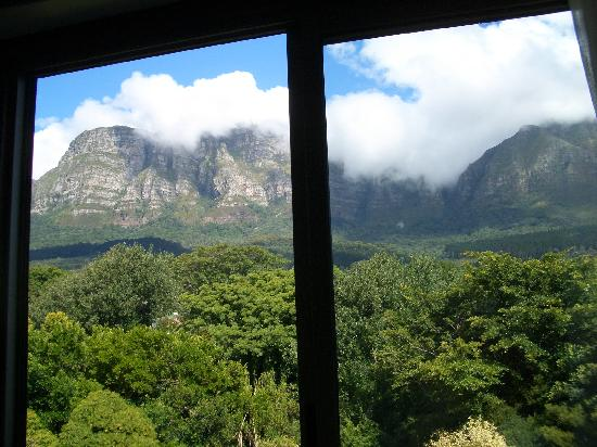 Vineyard Hotel : Our bedroom view