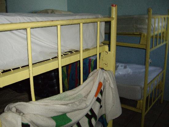 Key West Youth Hostel & Seashell Motel: 14-bed male dorm