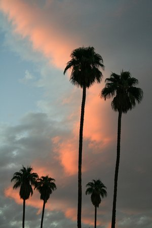 Palm Springs, Californië: Three and Two