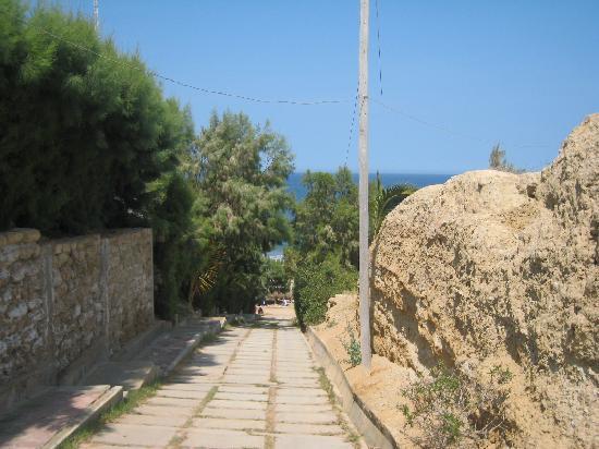 El Mirador de Vichayito: from the entrance