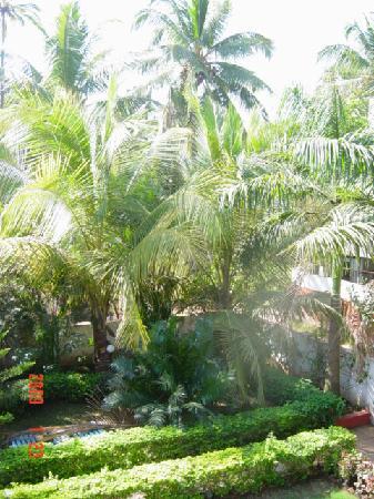 Mantheven Homes: Garden
