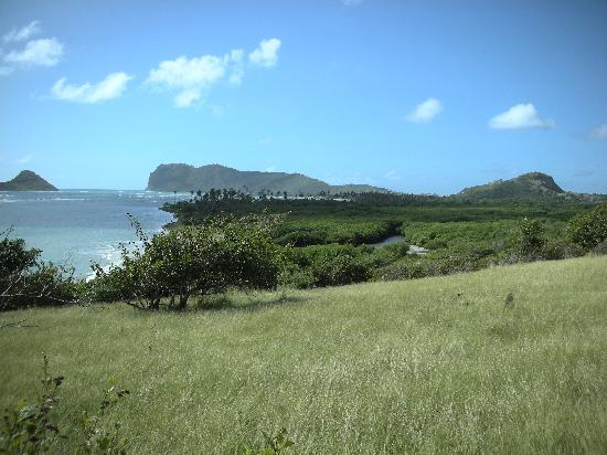 Looking south to the resort and Vieux Fort