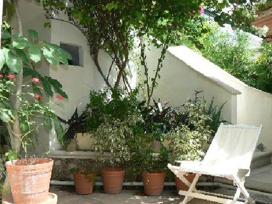 El Jardin Bed and Breakfast: Vista del Jardin