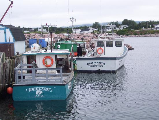 Outer island shag harbour picture of nova scotia for Nova scotia fishing