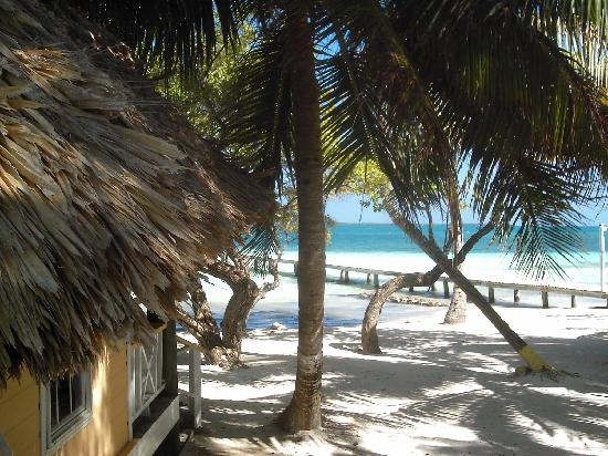 Coco Plum Island Resort: bar beach