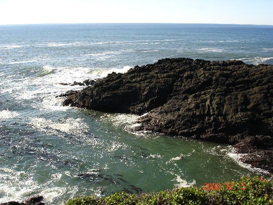 Dundee, Oregon: the Oregon coast