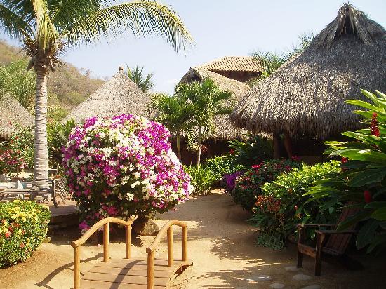 Present Moment Retreat: gardens