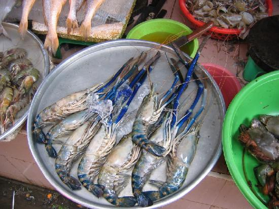 Bich Duyen Hotel: Thai Binh Blue Lobsters a few blocks away