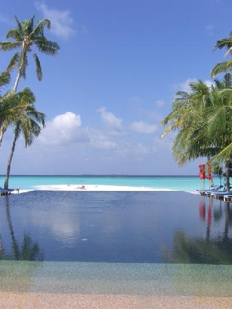 The Sun Siyam Iru Fushi Maldives: Infinity pool