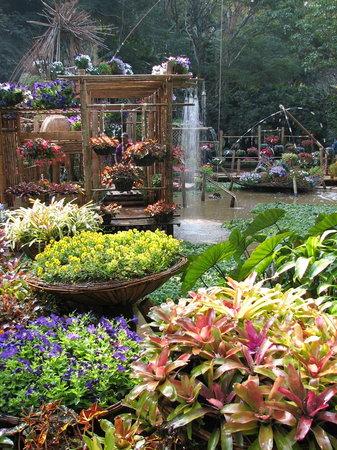 Mae Fah Luang Garden