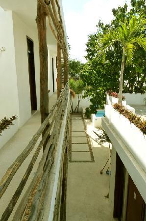 Hotel Latino: Une petite piscine au fond du jardin