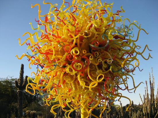 New chihuly beautiful blue 2014 picture of desert botanical garden phoenix tripadvisor for Chihuly garden and glass hours