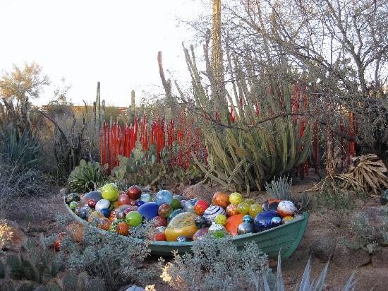 Butterfly House Picture Of Desert Botanical Garden Phoenix Tripadvisor