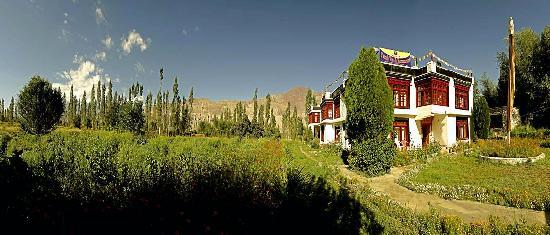 Yarab Tso: The beautiful garden