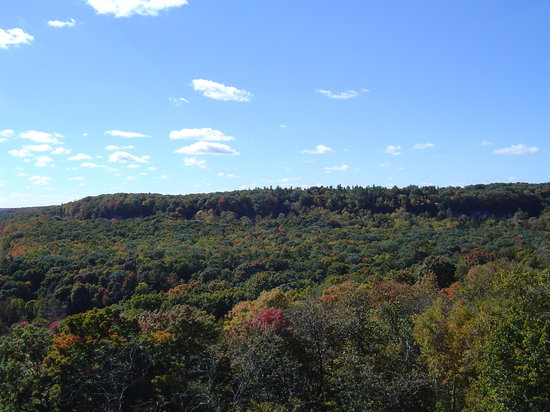 Rattlesnake Point Conservation Area: RattleSnake point, 2004