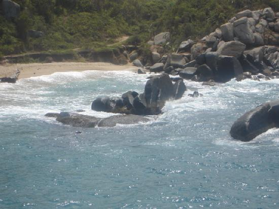 10 Mejores parques y atracciones naturales de Sidney