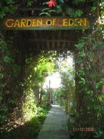 Garden of Eden Inn: Lush entrance to the main guest area