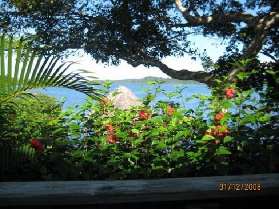Garden of Eden Inn: View at Breakfast
