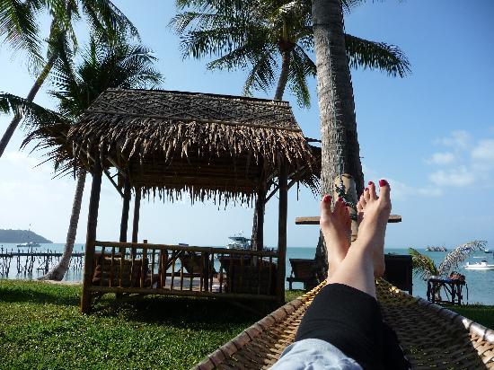 Samui Pier Resort: Relaxing on the hammock outside my bungalow