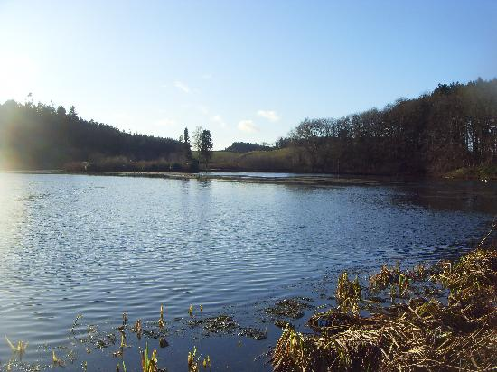 Doxford Cottages: Doxford Lake