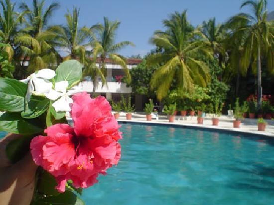 Villas Paraiso: alberca