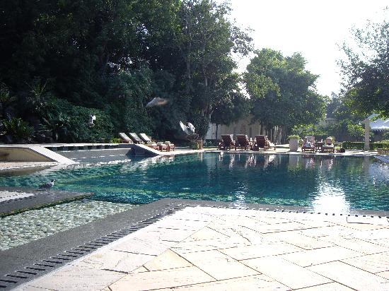 Rambagh Palace: The Pool