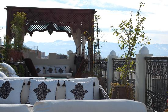 Riad Assakina : Views from the terrace to Atlas Mtns in the distance