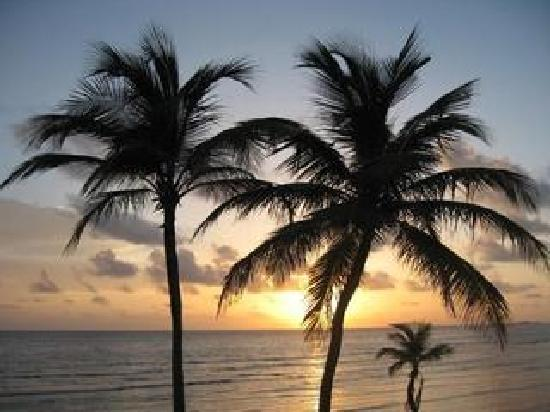 The Palms at Pelican Cove: Sunset at the Palms