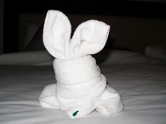 ذا تاكولا ريزورت آند سبا: funny towels
