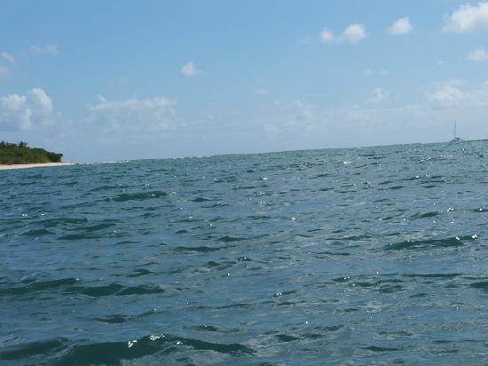 Bioluminescent (Mosquito) Bay : where biobay channel meets the sea