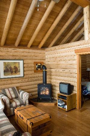 Birch Meadows Lodge B&B: Chalet - Living Area