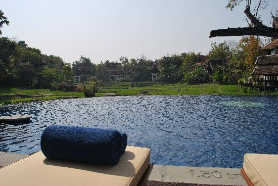 The Dhara Dhevi Chiang Mai: Pool view