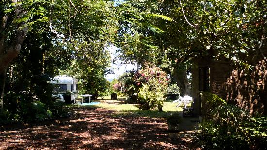 Lake St Lucia Lodge: The garden (with a rondavel on the right side)