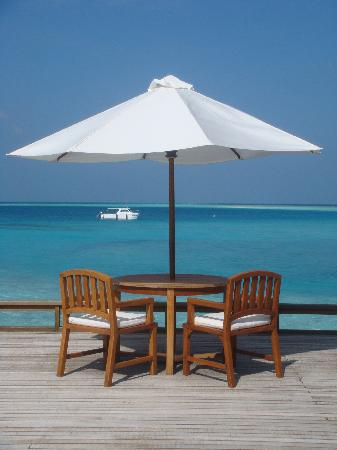 Baros Maldives: hows that for a breakfast view????