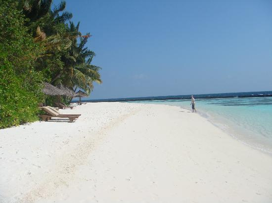 Baros Maldives: beaches are crowded as you can see