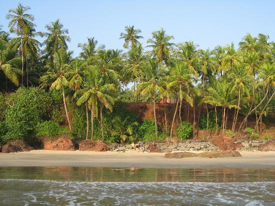 Kannur Beach House: The beach nearby