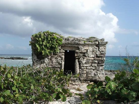 Grand Sirenis Riviera Maya Resort Spa Ruins On Property