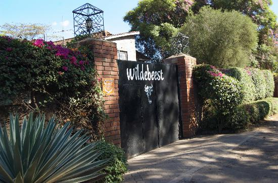 Wildebeest Eco Camp: Entrance