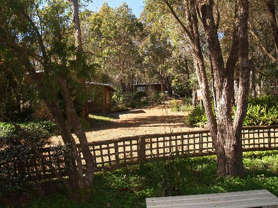 Gum Grove Chalets: From our chalet