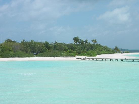 Cocoa Island by COMO: Blick von der Villa zur Insel