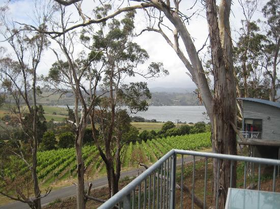 Rosevears Estate: View of the Tamar from room