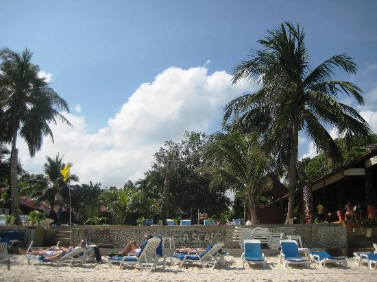 Samui Beach Apartments : Strand vor Hotel