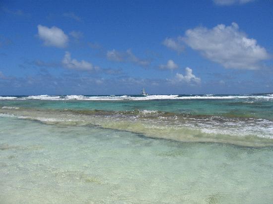 Sandy Island  Pape 50 + Tour